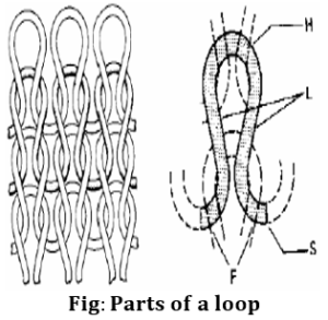 Parts of a knitting loop | Course and wale in machine | Course and wales | Types of Knitting | Fabric forming process | Knitting terms and definition | textile study center | textilestudycenter.com