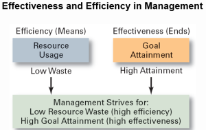 Effectiveness and Efficiency in Management