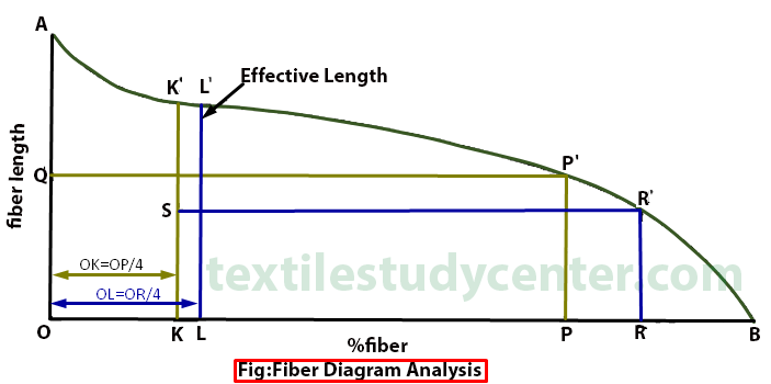FIBER DIAGRAM ANALYSIS