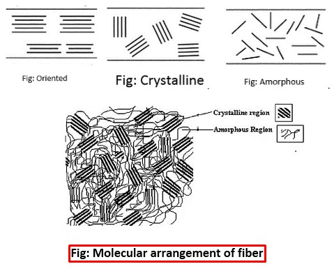 Crystalline and Amorphous Structure of Fiber