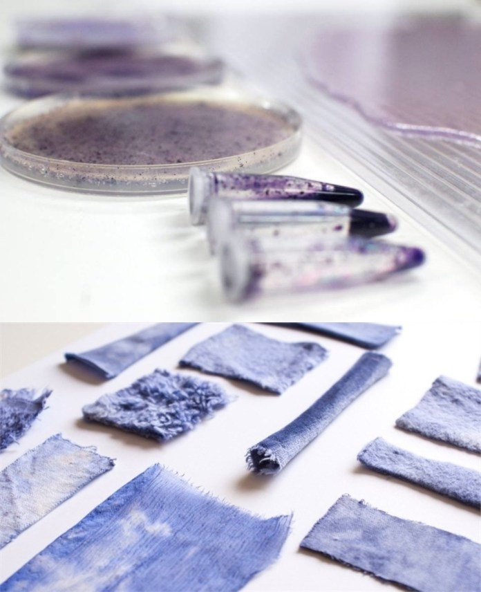 Colours Made From Bacteria