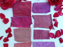 Fabric colouring with rose petals