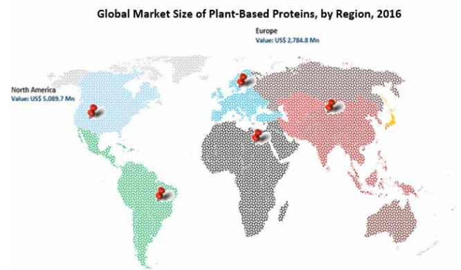 Global Market Of Plant Based Protein