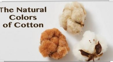 Natural Colors of Cotton Yarn